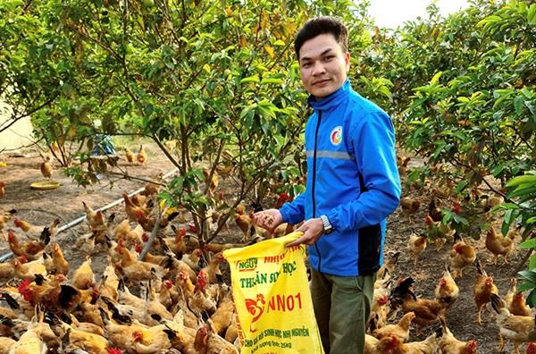 Quảng Bình: Sôi nổi phong trào thanh niên khởi nghiệp từ nông nghiệp